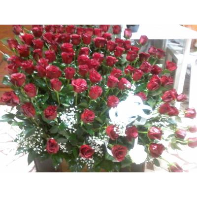 Fiori X Te.Fiori Piu Rose Rosse X Te