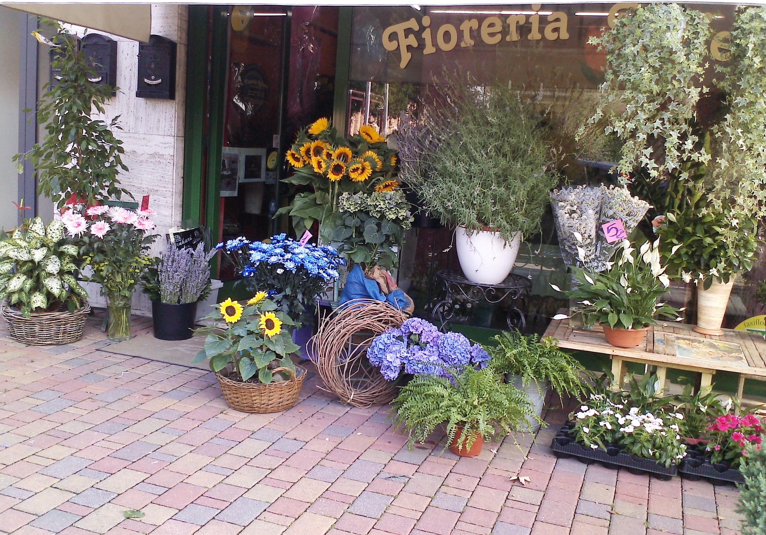 Fioreria Riviera